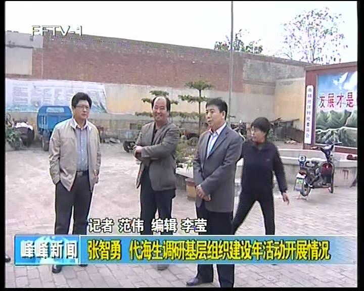 张智勇 代海生调研基层组织建设年活动开展情况