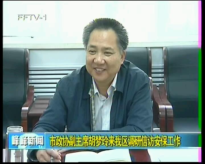 市政协副主席胡梦玲来我区调研信访安保工作