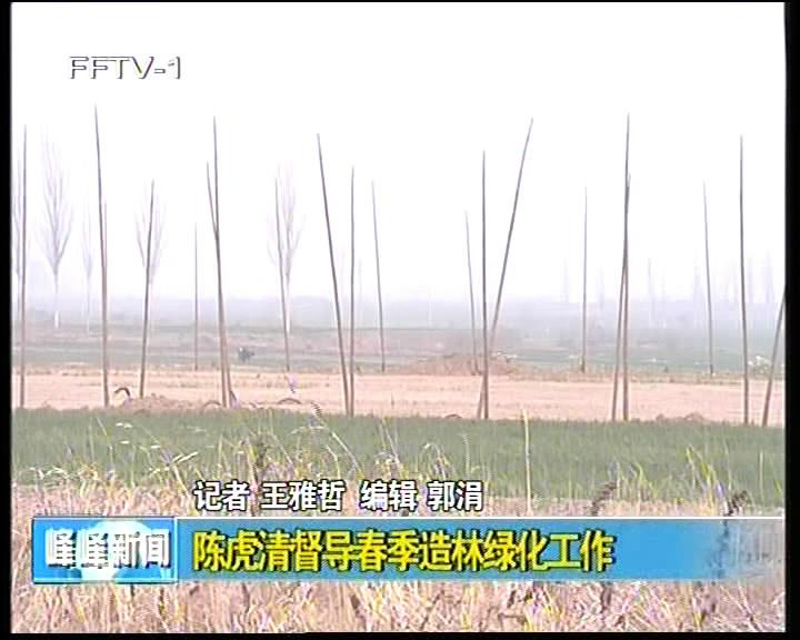 陈虎清督导春季造林绿化工作