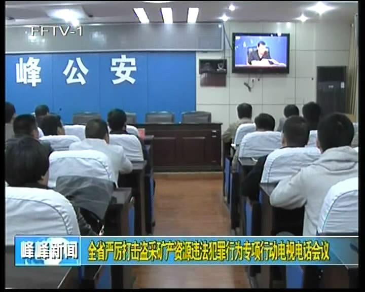 全力打击盗采矿产资源违法犯罪行为专项行动电视电话会议